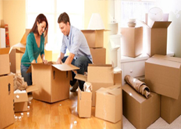 Packing and Unpacking services in Agra - Delhi